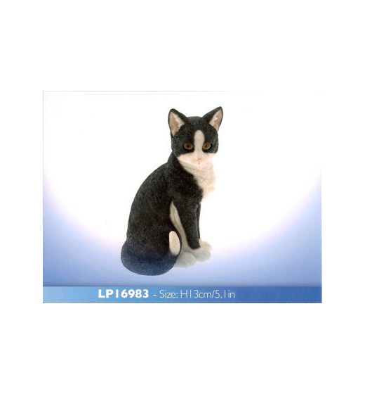Back Cat sitting LP16983