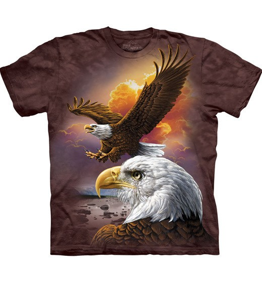 Eagle & Clouds