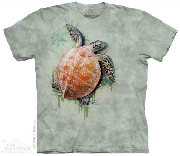 Sea Turtle Climb