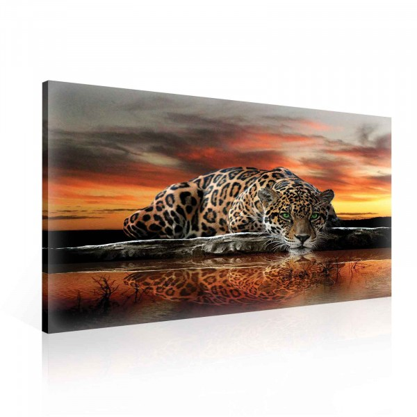 Leopard Nature Canvas Print 100cm x 75cm