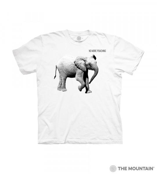 Baby Elephant KIDS