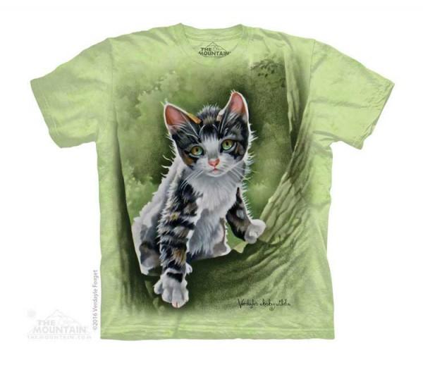 Tree Kitten