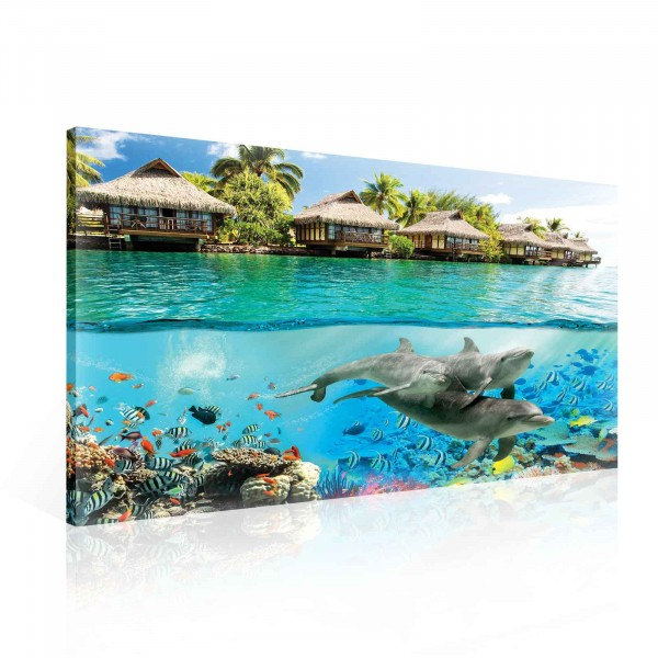 Island Paradise Ocean Dolphins Fishes Canvas Print 100cm x 75cm