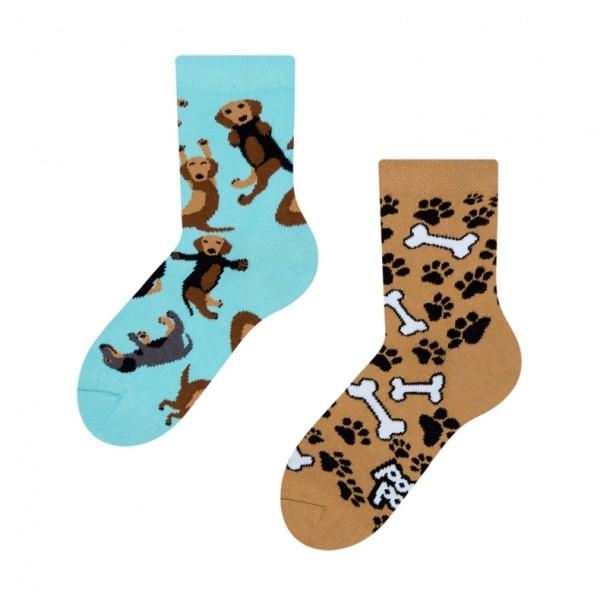 Good Mood Dachshund Unisex Kids Pet Dog Socks