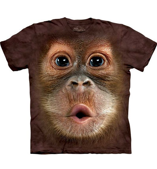 Big Face Baby Orangutan