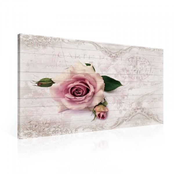 Blumen Rosen Pink Vintage Canvas Print 100cm x 75cm