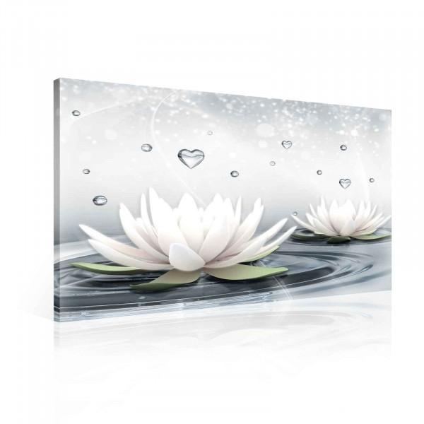 Flowers Lotus Water Drops Hearts White Canvas Print 80cm x 60cm
