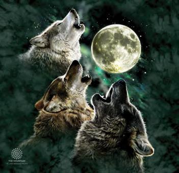 f1b43a730443d3 Three Wolf Moon Tumbler - The Coloured House