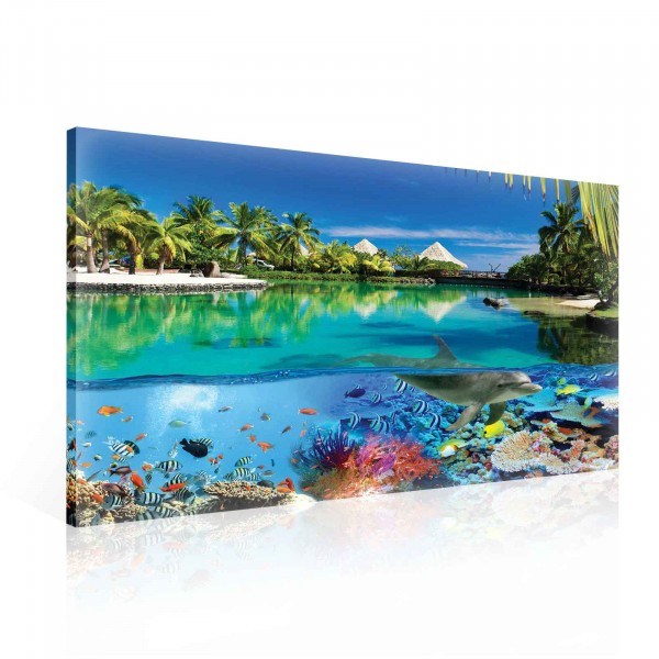 Island Paradise Meer Corals Dolphin Canvas Print 100cm x 75cm