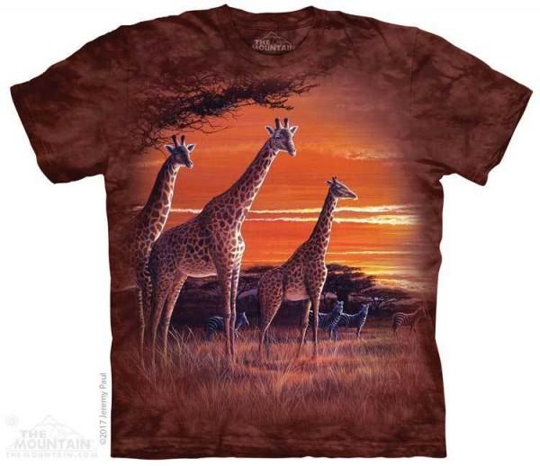 Sundown Giraffe