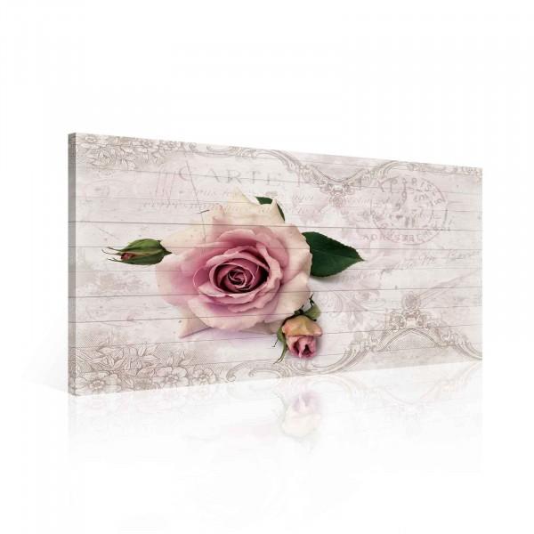 Blumen Rosen Pink Vintage Canvas Print 60cm x 40cm