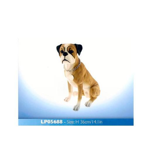 Boxer LP5688