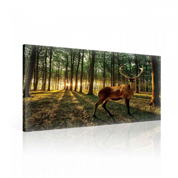 Deer Forest Trees Nature Canvas Print 60cm x 40cm