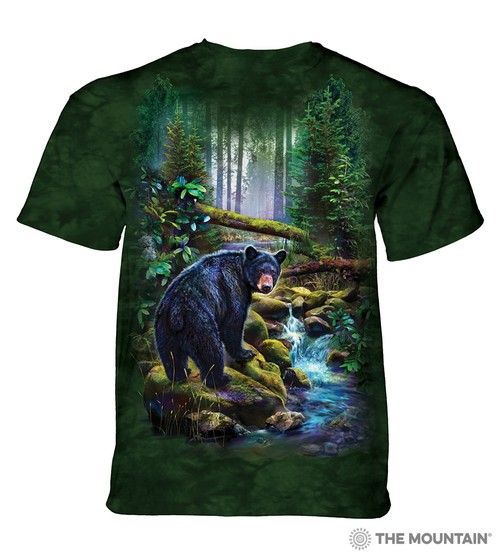 Black Bear Forest