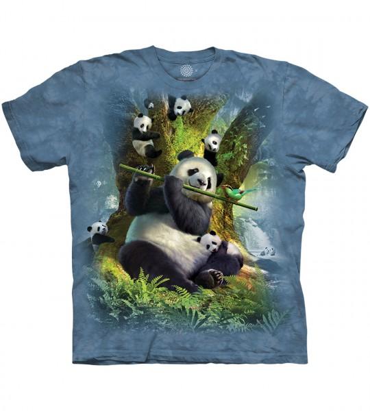 Pan Da Bear Panda
