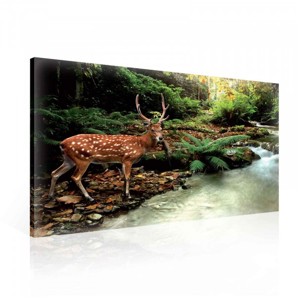 Deer Nature Forest Canvas Print 100cm x 75cm