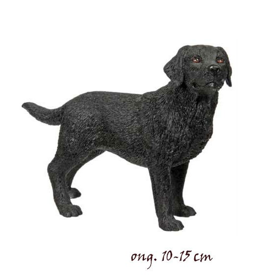 Labrador Black LP4152