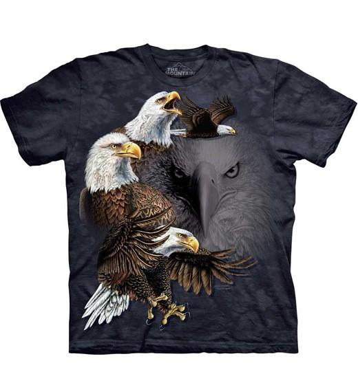 Find 10 Eagles