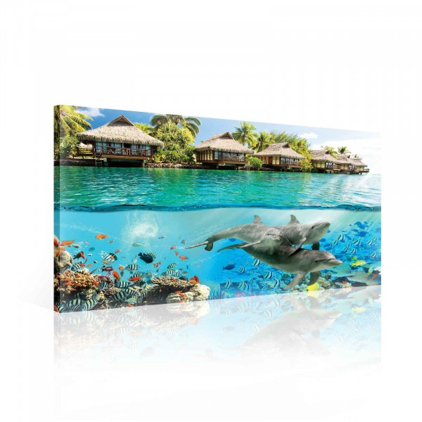 Island Paradise Ocean Dolphins Fishes Canvas Print 60cm x 40cm