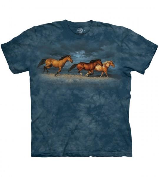 Thunder Ridge Horses
