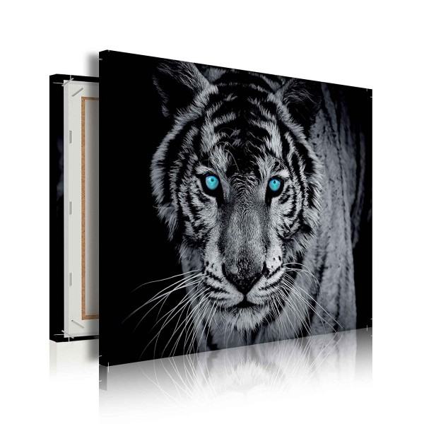 Tiger Animal Dark Canvas Print 100cm x 75cm