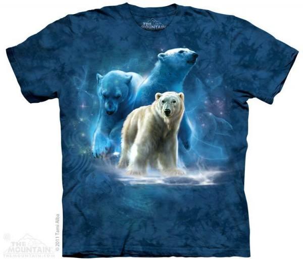 Polar Collage