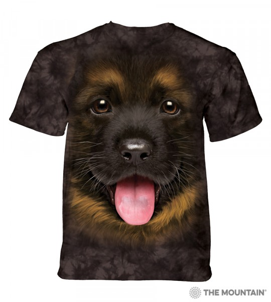 Big Face German Shepherd Puppy