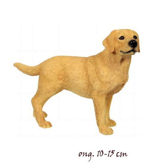 Labrador Golden LP4153