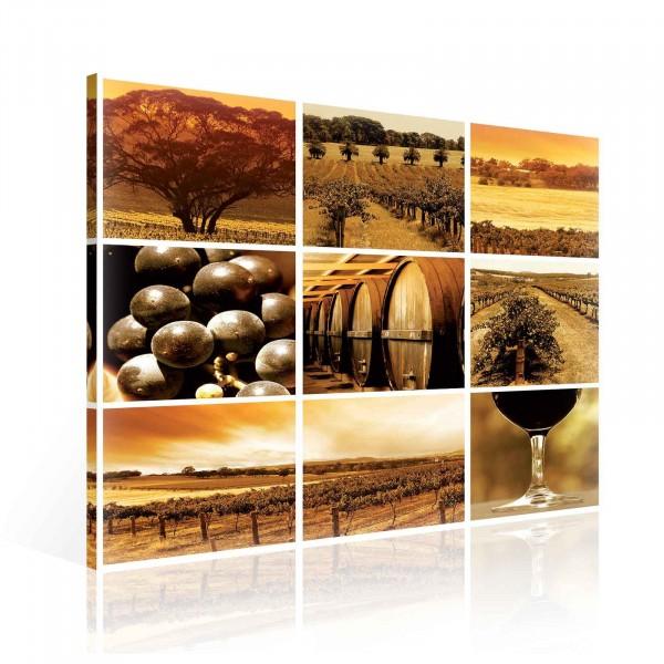 Wine Landscape Canvas Print 80cm x 80cm