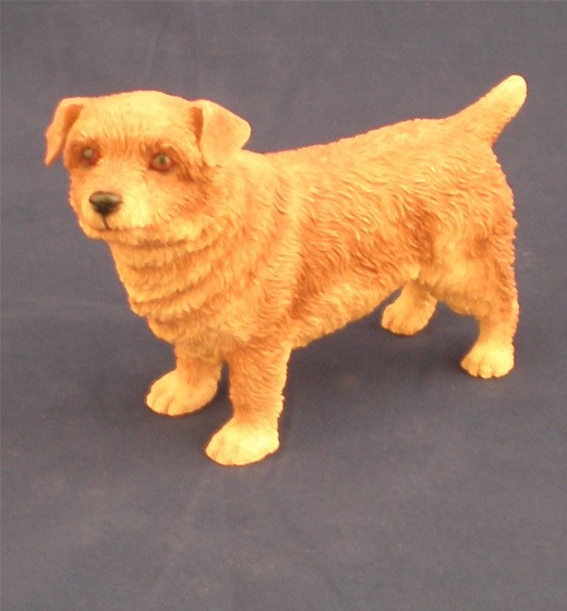 Norfolk Terrier LP6918